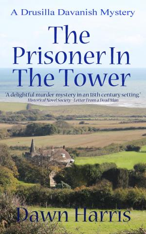 Prisoner_in_tower_kindle_cover_5.jpg